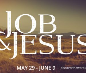 The story of Jesus found in the book of Job